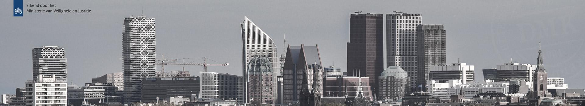 banner-skyline-den-haag-2